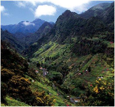 Madeira Faial